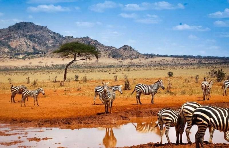 voyager-au-kenya